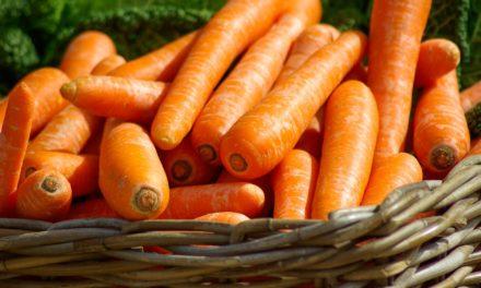 Make a Rabbit Jealous: Drink More Carrot Juice