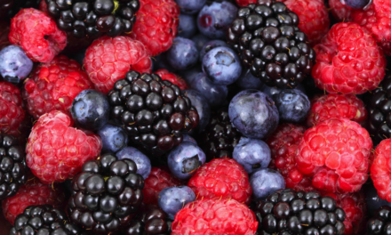 Be Berry, Berry Fit Again!