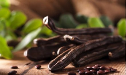 Carob versus Cacao and Chocolate