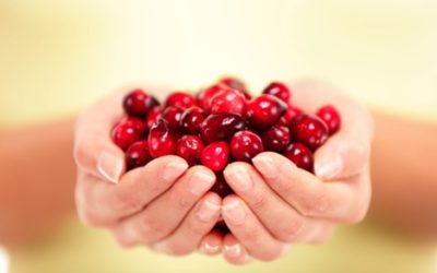 Cranberries: Juicing and Health Benefits